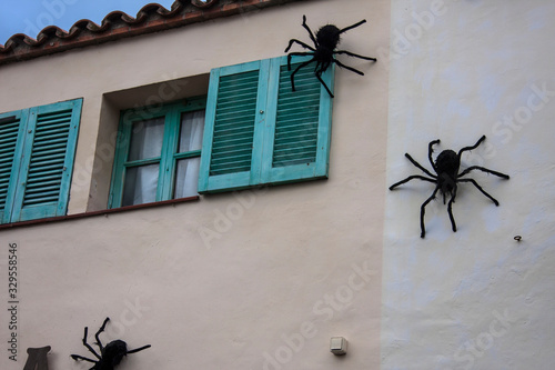 Photo Giant spiders on the wall.