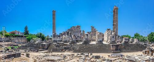 The Temple of Apollo at Didyma, Turkey Wallpaper Mural
