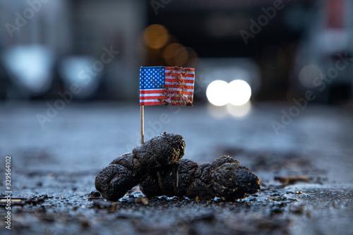 Photo US Flagge steckt in Hundekot an einem regenerischen späten Nachmittag