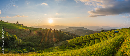 Foto Rice fields Before harvesting sunset Farmer's house Terraced rice paddy field in Chiang Mai, Thailand