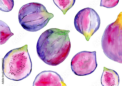 Watercolor purple figs isolated on white background. Hand painted fruits illustration for summer design. - 329605382