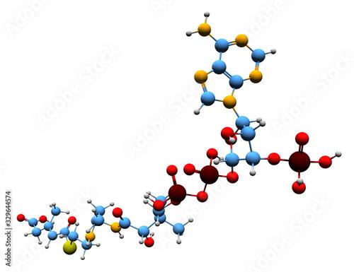 3D image of 3-Methylglutaconyl-CoA skeletal formula - molecular chemical structu Wallpaper Mural