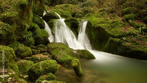 Fototapeta Der kleine Wasserfall im mystischem Wald