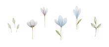 Blue Watercolor Set Of Four Fl...