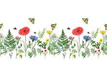 Watercolor Wild Flower Field S...