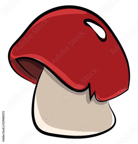 Red mushroom, illustration, vector on white background. Fototapete
