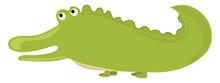 Green Crocodile, Illustration,...