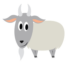 Old Goat, Illustration, Vector...
