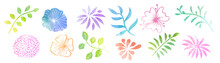 Vector Watercolor Flowers And ...