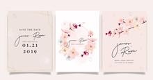 Sherry Blossom Summer Flower W...