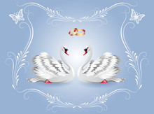 Card With Two White Swans And ...