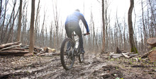 The Cyclist Is Riding On Mountain Bike On Dirt Trail In Forest In The Early Spring