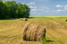 Summer Landscape, Haymaking, H...