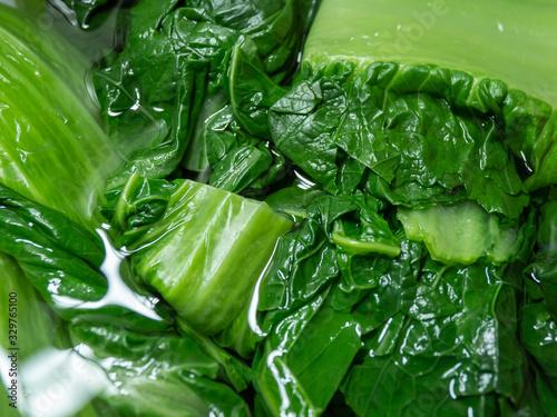 Removal of Astringent Taste, 高菜を水につけてアク抜きする様子 調理 Canvas Print