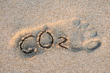 Eco-friendly Carbon Footprint ...