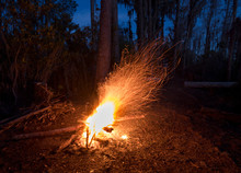 Abandoned Campfire Shooting Sp...
