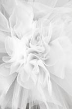 Closeup Detail Of The Ballerina White Tutu Dress