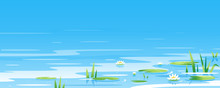 Water Surface With Water Lily And Bulrush Plants Nature Landscape Illustration, Fishing Place, Pond With Blue Water With Green Plants