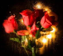 Abstract Red Rose Backdrop Wit...