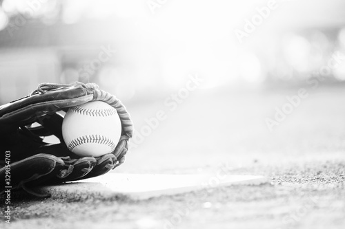 baseball and glove on ball field in black and white with copy space for sports seasno Canvas Print