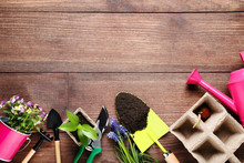 Garden Tools With Flowers On B...
