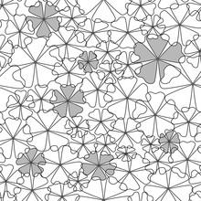Set White Black Flower, For Pattern Seamless, Material, Paper, Wallpaper, Textil, White Background