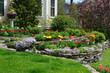 canvas print picture - Hilliside landscaping with natural stones, tulips and flox. Classic and colorful garden.