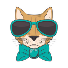 Funny Cat With Sunglasses Cool...