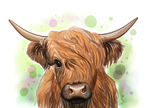 Highland Cow Print • Farmhou...