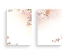 Beautiful Spring Flower Frame, Invitation, Wedding Card, Thanks Greeting, Flower Background
