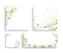 Beautiful Spring Flower Frame,...