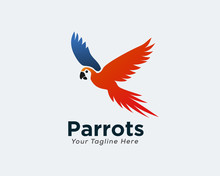 Flying Parrots Art Logo Design Inspiration
