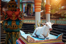 Hinduism. Sacred Cow. Clay Sta...