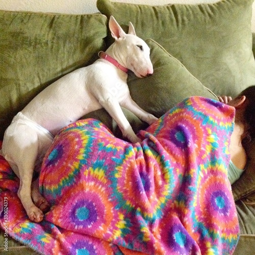 Rear View Of Woman Sleeping On Sofa With Bull Terrier At Home Fototapete