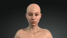 3d Female Model. Female Model ...