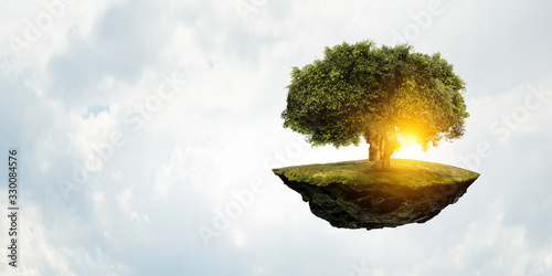 Image of tree and landscape Canvas Print