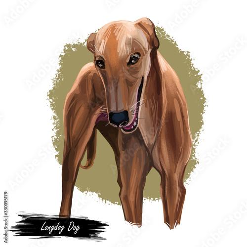 Canvas-taulu Longdog dog digital art illustration isolated on white