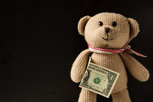 Teddy Bear Stands And Holds Money, US Dollar, On A Black Background.