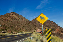 Mountain Goat Road Crossing Sign. Sign Warning Of A Ram Crossing In The High Desert Mountains Of The American Southwest In Arizona.