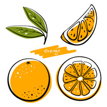 Orange Fruit, Whole, Half, Slice And Leaves. Colorful Sketch Collection Of Citrus Fruits Isolated On White Background. Doodle Hand Drawn Vegetables. Vector Illustration