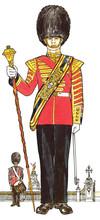 Drum Major Of The Grenadier Gu...