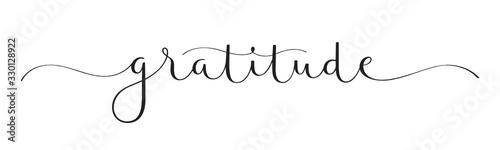 Obraz GRATITUDE vector black brush calligraphy banner with swashes - fototapety do salonu