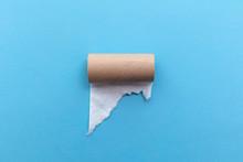 Empty Toilet Paper Roll On A B...