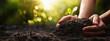 Leinwanddruck Bild Plant in Hands. Ecology concept. Nature Background