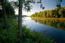 Early Morning Light On The Shore Of The Kankakee River In Northern Illinois, USA.