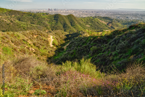 Griffith Park hiking trail and spectacular view of downtown Los Angeles from Hol Wallpaper Mural