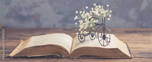 Old opened book, heart shaped paper sheets, iron bicycle with flowers on wooden Wallpaper Mural