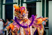 Person In Flamboyant Costume P...