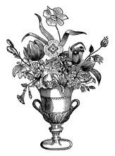 Flower Vase, Vintage Illustration.