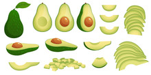 Cartoon Avocado. Ripe Avocados...